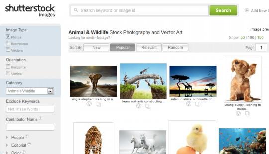 shutterstock 540x310 Gambar Percuma Terbaru Dari Shutterstock