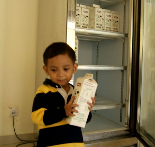 Desa Dairy Farm 10 540x512 Desa Dairy Farm Mesilau Highland Kundasang