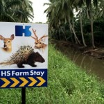 HS Farmstay Dan Mini Zoo