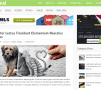 Nominal WordPress Theme – MyThemeShop