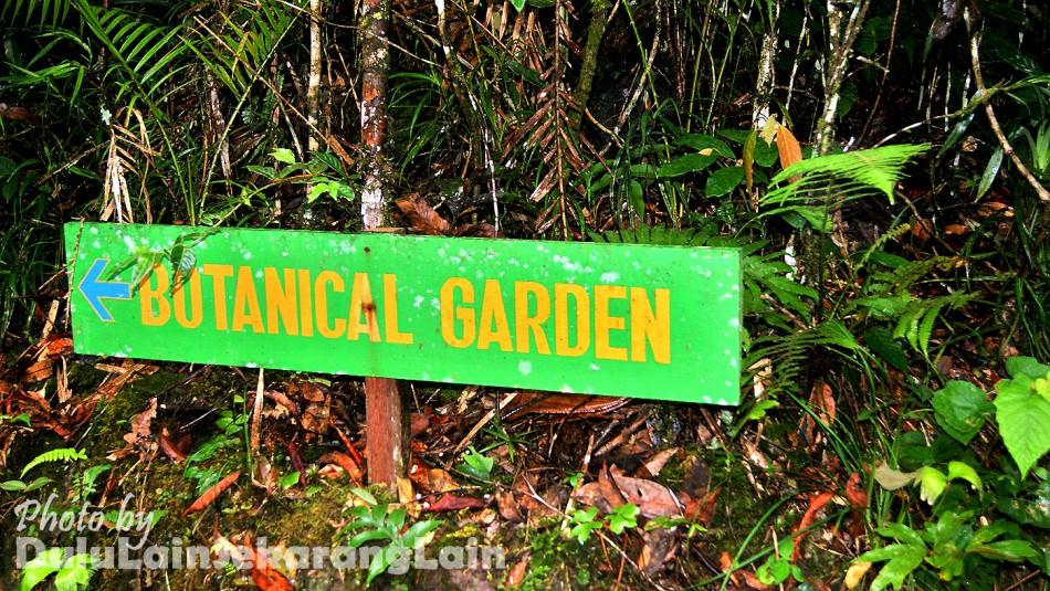 Kinabalu-Park-Photography-7