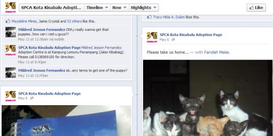 SPCA adoption page