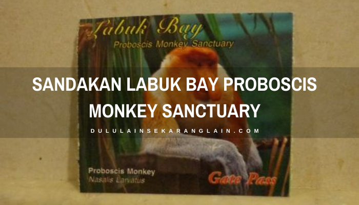 Sandakan Labuk Bay Proboscis Monkey Sanctuary