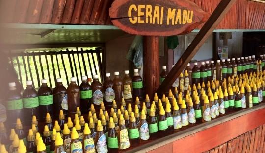 Penternakan Lebah Madu Di Gombizau Honey Bee Farm Kudat