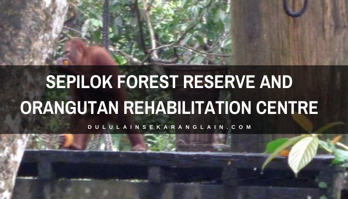 Sepilok Forest Reserve and Orangutan Rehabilitation Centre