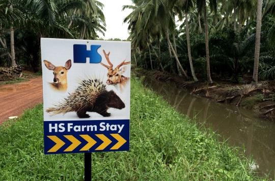HS Farmstay
