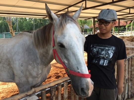 kuda putih
