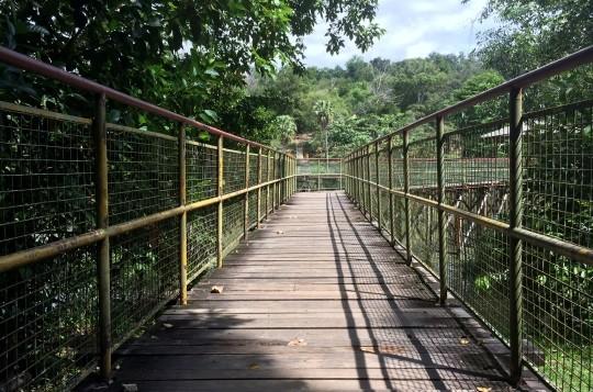 Taman Tun Fuad Stephens Pic 5