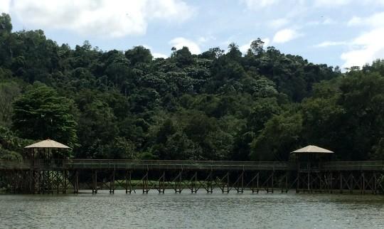 Taman Tun Fuad Stephens Pic 6