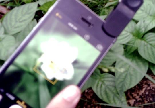 macro lens iphone 3
