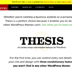 thesis blogs