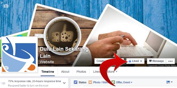 DLSL FB