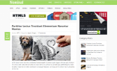 Nominal WordPress Theme – MyThemeShop