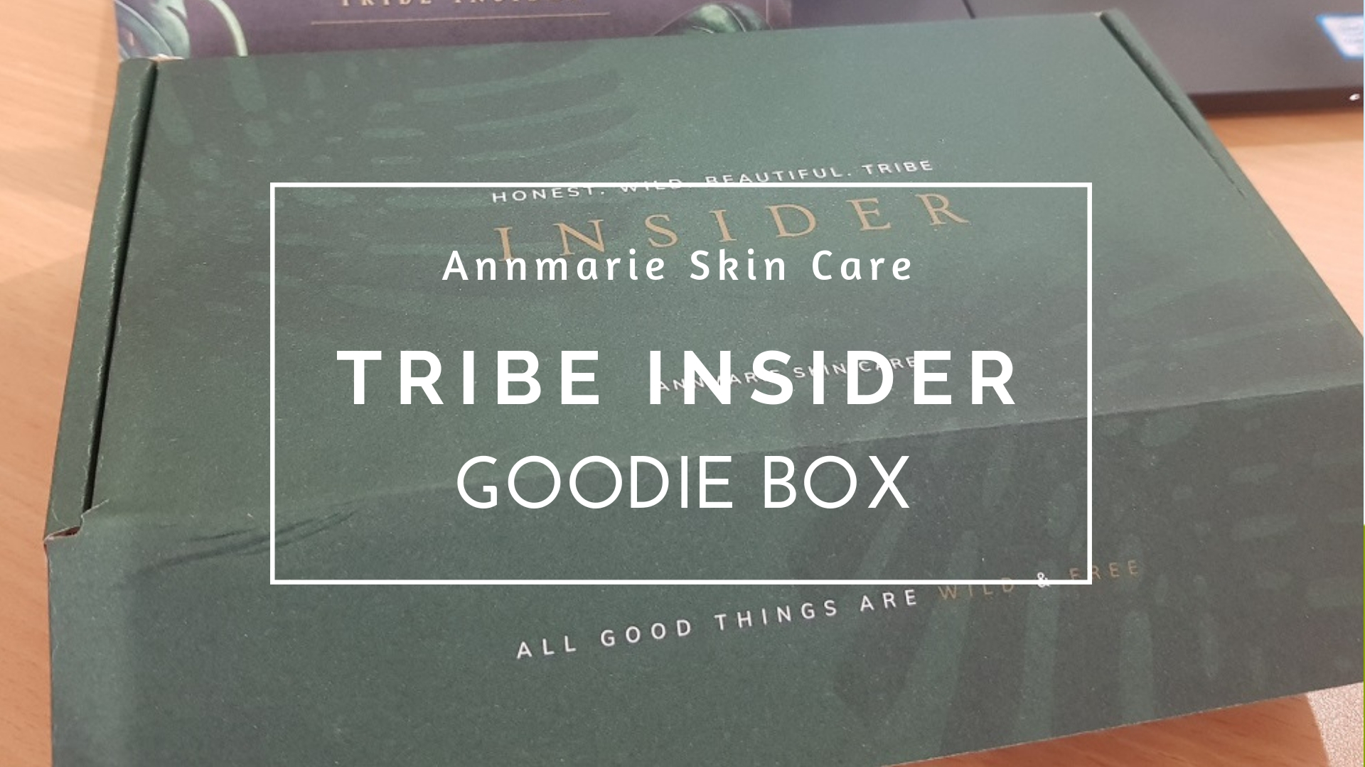 Annmarie Skin Care Tribe Insider Goodie Box